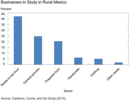 Businesses in Study in Rural Mexico