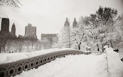 LSE_2016_qa-snowstorm_bram_460_art