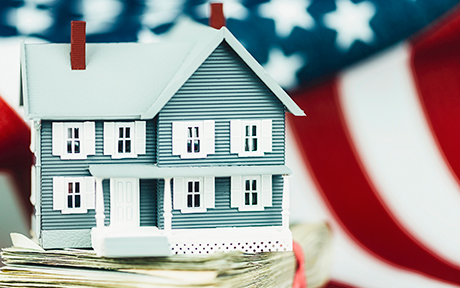 LSE_Risky Business: Government Mortgage Insurance Programs