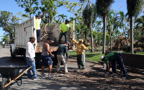 LSE_2018_Just Released: Puerto Rico and the U.S. Virgin Islands after Hurricanes Irma and Maria