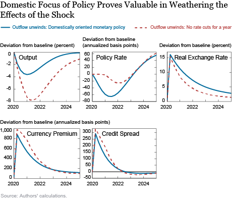 Modeling the Global Effects of the COVID-19 Sudden Stop in Capital Flows