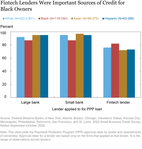 Who Received PPP Loans by Fintech Lenders?